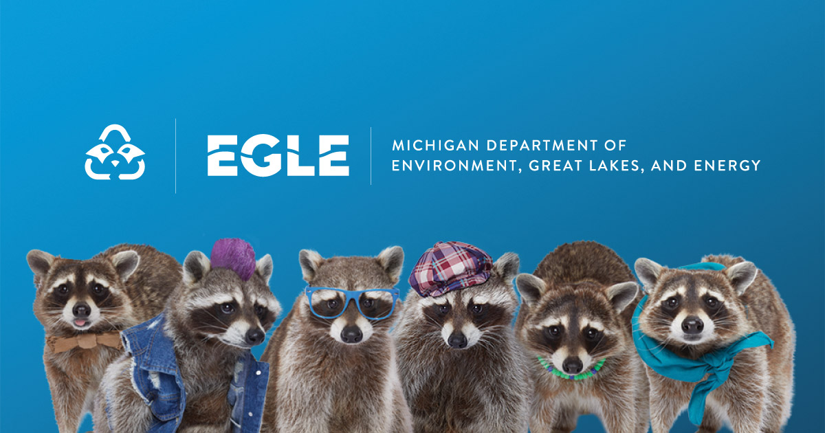 Home - Recycling Raccoons