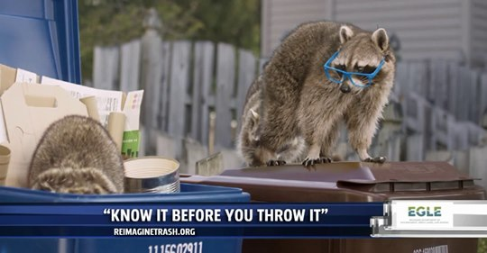 Video still of raccoons on recycling bins